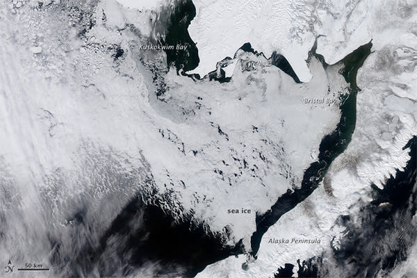 On April 11, sea ice still covered the Bering Sea.