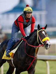 Trinniberg trains on the track in preparation for the 138th Kentucky Derby at Churchill Downs on May 2. Trinniberg, the expected pace-setter, starts from post nine