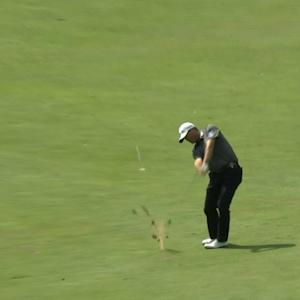 Ryan Palmer's beautiful approach leads to a short birdie at Deutsche Bank