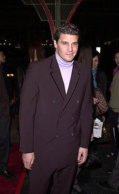 Premiere: David Boreanaz at the Hollywood premiere of Warner Brothers' Valentine - 2/1/2001