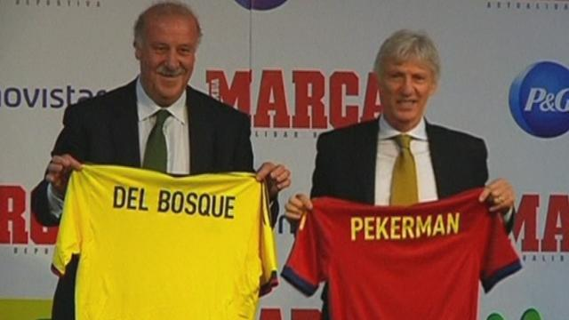 World Cup - Del Bosque hints at changes for 2014 World Cup