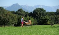 A young woman pushes a stroller across a lawn in Westerndorf near Rosenheim, southern Germany on August 27. Having a smaller family is a springboard for giving future generations the chance of greater prosperity, according to a Swedish study published on Wednesday