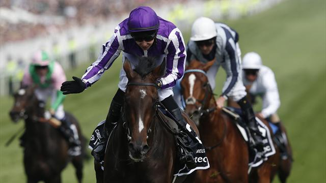Camelot's Triple Crown bid over