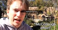 McCollough Effect: The Image That Can Rewire Your Brain [WATCH WITH CAUTION]
