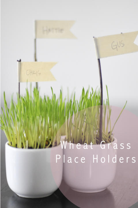 Wheatgrass Placecard Holders