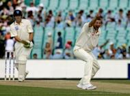 File picture of Stephen Harmison. The former England paceman expects spinners Graeme Swann and Monty Panesar to take most of the tourists' wickets during their series in India but says the seamers will also have a key role to play. Durham quick Harmison played three Tests in India, taking just six wickets, and knows how tough sub-continental pitches can be for fast bowlers