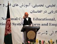 Afghan President Hamid Karzai addresses a seminar aimed at reforming Afghanistan's educational system in Kabul on June 23. A call by Karzai for more foreign involvement in the country's higher education system risks exacerbating an already dangerous brain drain, analysts warn