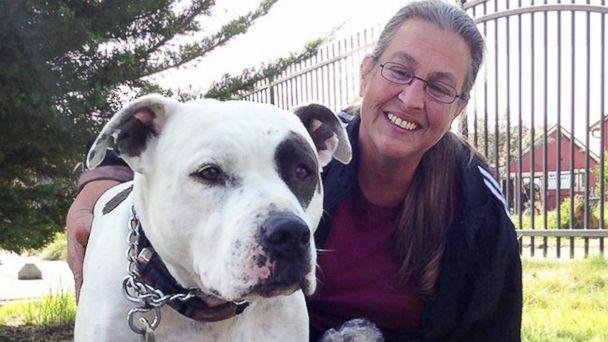 Homeless Family Who Held on to Pit Bull Has New, Dog-Friendly Home