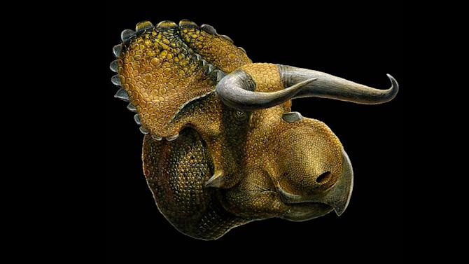 Big-Nosed Dinosaur Species Found in Utah