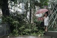 A pedestrian walks past fallen branches in the aftermath of Typhoon Vicente in Hong Kong on July 24. Scores of people were injured and trees were ripped from the ground as a typhoon lashed Hong Kong packing winds in excess of 140 km an hour, officials said Tuesday