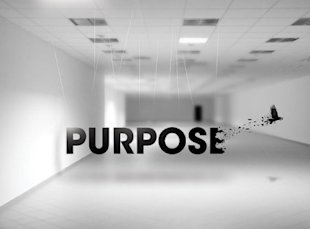 Is This the End of Purpose Driven Ads or a New Beginning? image ByPurpose