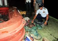This undated handout photo received on April 23, 2013, from the Philippine Coast Guard (PCG) shows a coast guard officer inspecting protected pangolins, wrapped in plastic bags and found hidden in a cargo boat at the port in Palawan island in the western Philippines. The boat crashed into one of the Philippines' most famous reefs and damaged almost 4,000 square metres of centuries-old coral