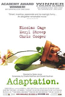 Poster of Adaptation