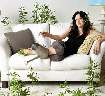 """<a href=""""/baselineperson/3114360"""">Mary-Louise Parker</a> Showtime's Weeds"""