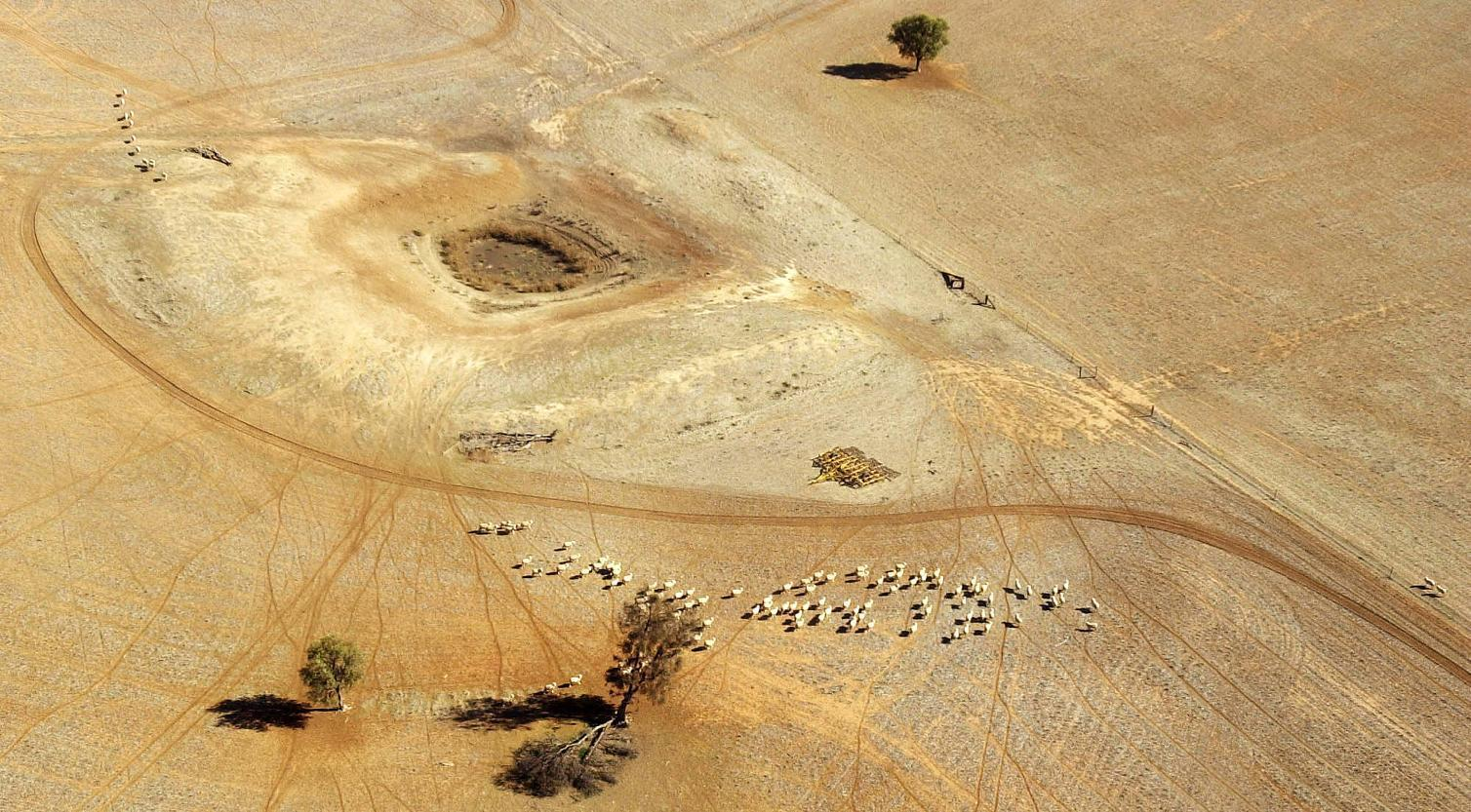 California looks Down Under for drought advice