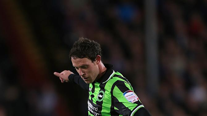 Soccer - npower Football League Championship - Play Off - Semi Final - First Leg - Crystal Palace v Brighton and Hove Albion - Selhurst Park