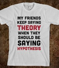 Grammar Hammer: Hypothetically Speaking… image theory vs hypothesis.american apparel unisex fitted tee.silver.w380h440z1