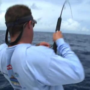 Bimini Pure Fishing