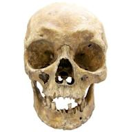 By analyzing genes from a tooth of Polish Gen. W?adys?aw Sikorski, researchers confirmed he had the blue eyes and blond hair seen in portraits painted many years after his death in 1943.