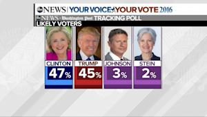Donald Trump Makes Gains in Statewide Polls