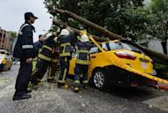 Police and firemen attempt to remove a tree that crushed a taxi during typhoon Soulik, in Taipei, on July 13, 2013. Soulik has battered Taiwan with torrential rain and powerful winds that left two people dead and at least 100 injured