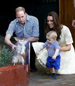 Prince George Squeals With Delight, Meeting His Bilby Namesake With Parents Kate Middleton, Prince William: Pictures