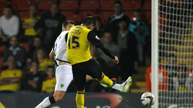 Soccer - Capital One Cup - Third Round - Watford v Norwich City - Vicarage Road