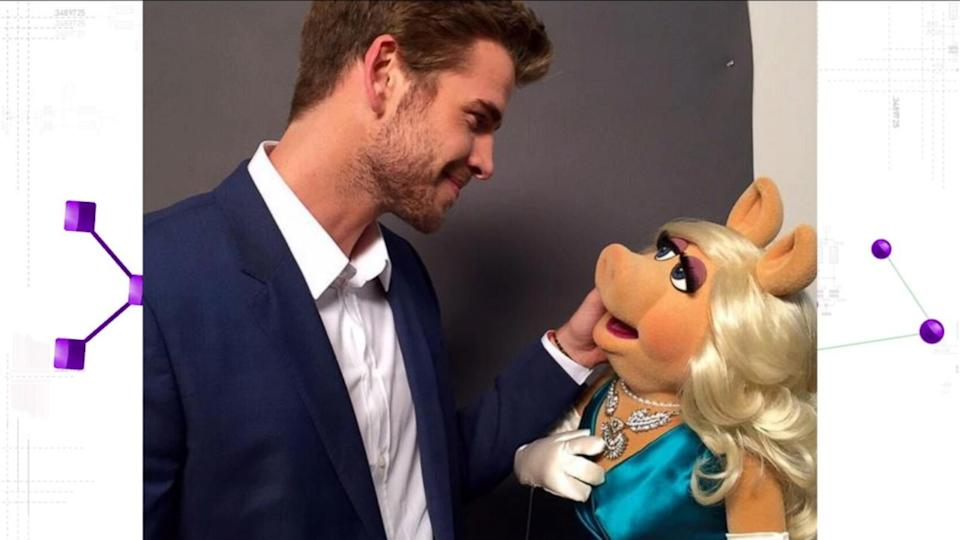 Liam Hemsworth Flirts With Missy Piggy: 'Most Beautiful Girl in the World'