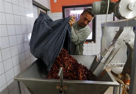 Paprika maker Peter Szabo pours a sack of dried peppers into a custom-made grinder in Batya