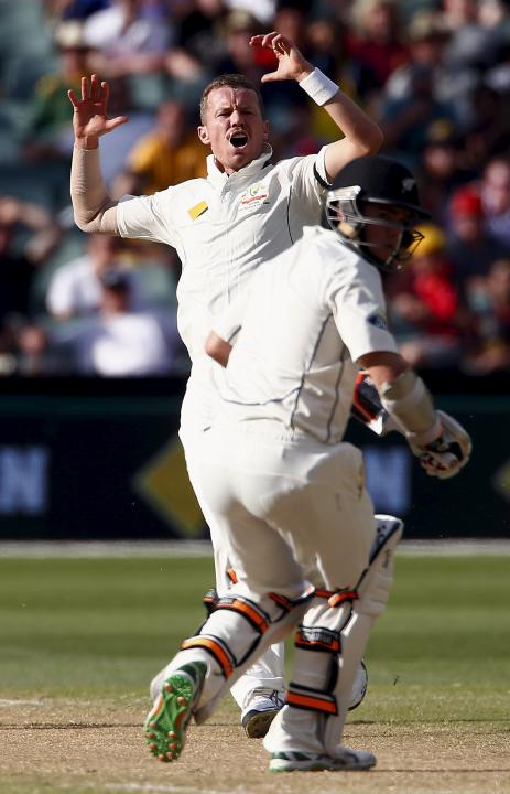 Australia's Peter Siddle reacts as New Zealand's Tom Latham hits a shot during the second day of the third cricket test match at the Adelaide Oval, in South Australia