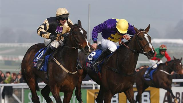 Horse Racing - Lord Windermere's next test up in the air