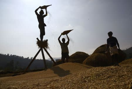 Millions of poor farmers to benefit from new type of insurance: study