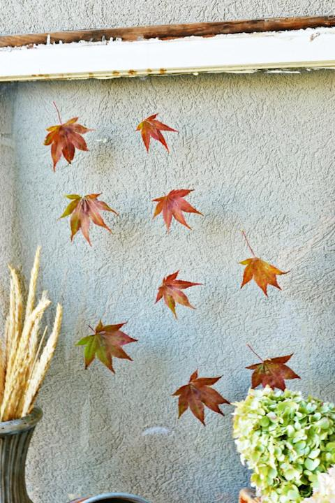 Create a Falling Leaves Window Pane