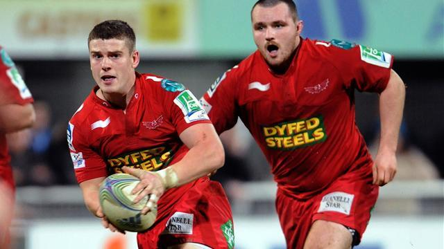 RaboDirect Pro12 - Holley to take Scarlets role