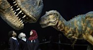 "Schoolchildren at the ""Walking with Dinosaurs"" exhibition in London's O2 Arena in 2009. Giant dinosaurs that roamed the Earth millions of years ago may have warmed the planet with the gas they produced from eating leafy plants, British scientists say"