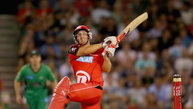 Big Bash League - Renegades v Stars