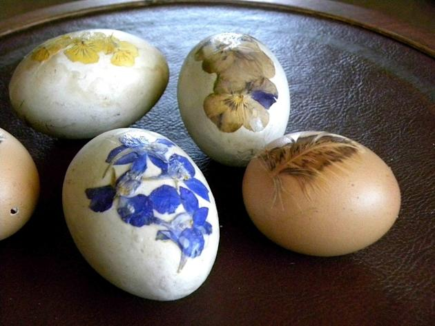 Pressed Flower Eggs