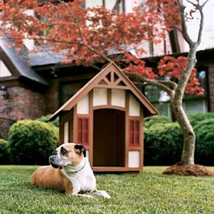 English-style tudor doghouse