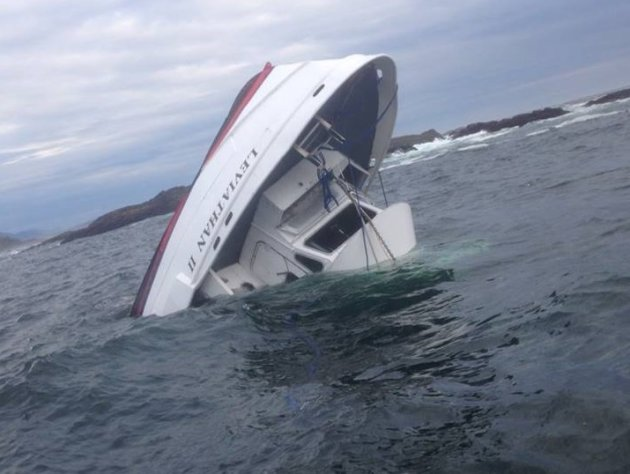 Whale watching boat overturns
