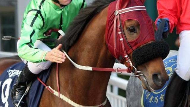 Horse Racing - Military Attack ambushes field to win HK Gold Cup