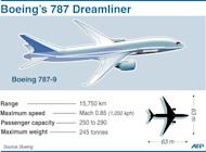 Graphic on the Boeing Dreamliner jet. The grounding of Dreamliners came after a battery fire on a parked JAL 787 at Boston's Logan International Airport and an incident in which fumes from a battery forced the emergency landing of an ANA-operated plane in Japan