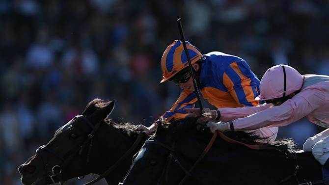 2013 Breeders' Cup World Championships - Day 2
