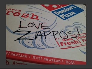 How to Answer Weird Questions On Live Chat. Amazon & Zappos Style image zappos sent me a pizza 9 638
