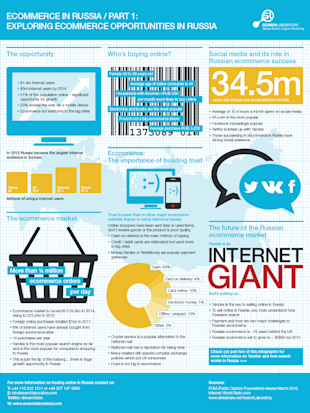 Russian E Commerce Statistics Infographic image russia infographic 1