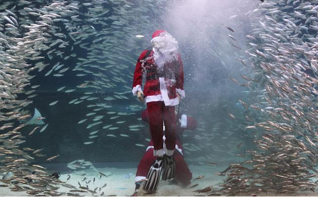 Santa Claus Diver Performs In Seoul