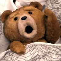 Universal's 'Ted' Passes $500M Worldwide
