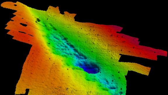 Primeval Underwater Forest Discovered in Gulf of Mexico
