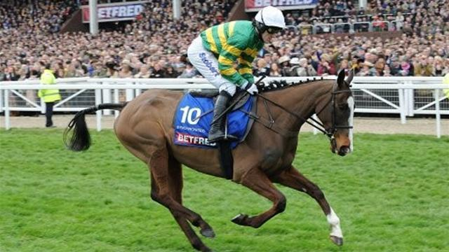 List of Grand National equine fatalities