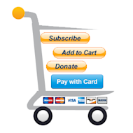 Five Tips for Choosing a Payment Gateway image shoppingonline