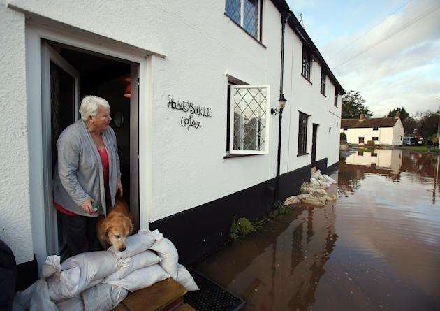 TAUNTON, UNITED KINGDOM - NOVEMBER 25: Anne Bartlett and her dog Henry look out from their flooded property in the centre of the village of Ruishton, near Taunton, on November 25, 2012 in Somerset, England. Another band of heavy rain and wind continued to bring disruption to many parts of the country today particularly in the south west which was already suffering from flooding earlier in the week. (Photo by Matt Cardy/Getty Images)
